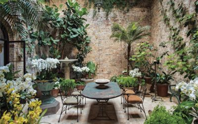 Winter garden: Creating a posh and pampered indoor greenhouse