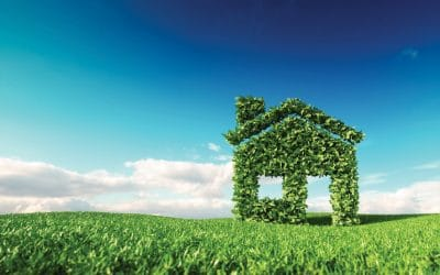 Go green: 11 easy eco swaps we can all make at home