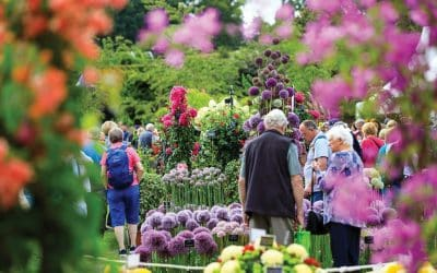 Green fingers? These are the best garden shows and festivals to visit in 2020