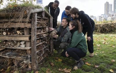 Chris Packham calls on families to create wildlife sanctuaries in their gardens and on their windowsills