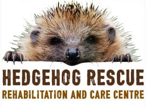 Hedgehog Rescue