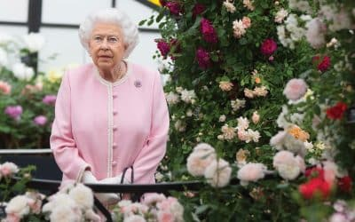 Blooming lovely! The Queen and royal family share favourite blooms to mark Chelsea Flower Show