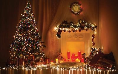 Oh Christmas tree, oh Christmas tree… Wondering when to put your Christmas tree up?