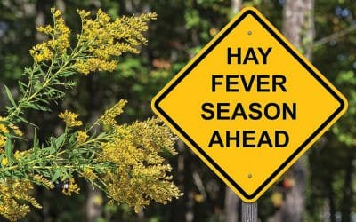 Atchoo! Top tips for hay fever sufferers this Spring and Summer