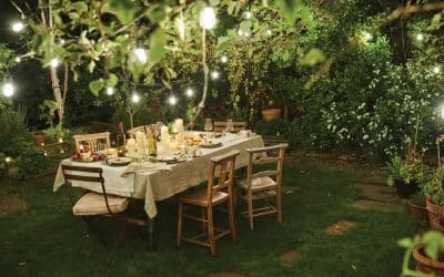 Al fresco dining: 10 top tips for planning an outdoor dinner party or picnic