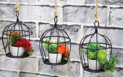 Spruce up your garden: Ideas to decorate your outside space