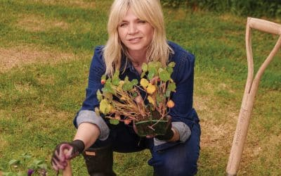 Zoe Ball: I caught the gardening bug and now I'm desperate to help the bees